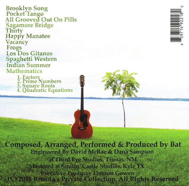 bat cd2 - Copy
