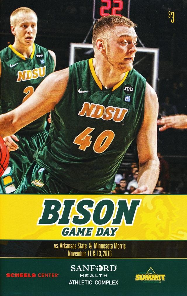 bison-11-11-16-1-copy