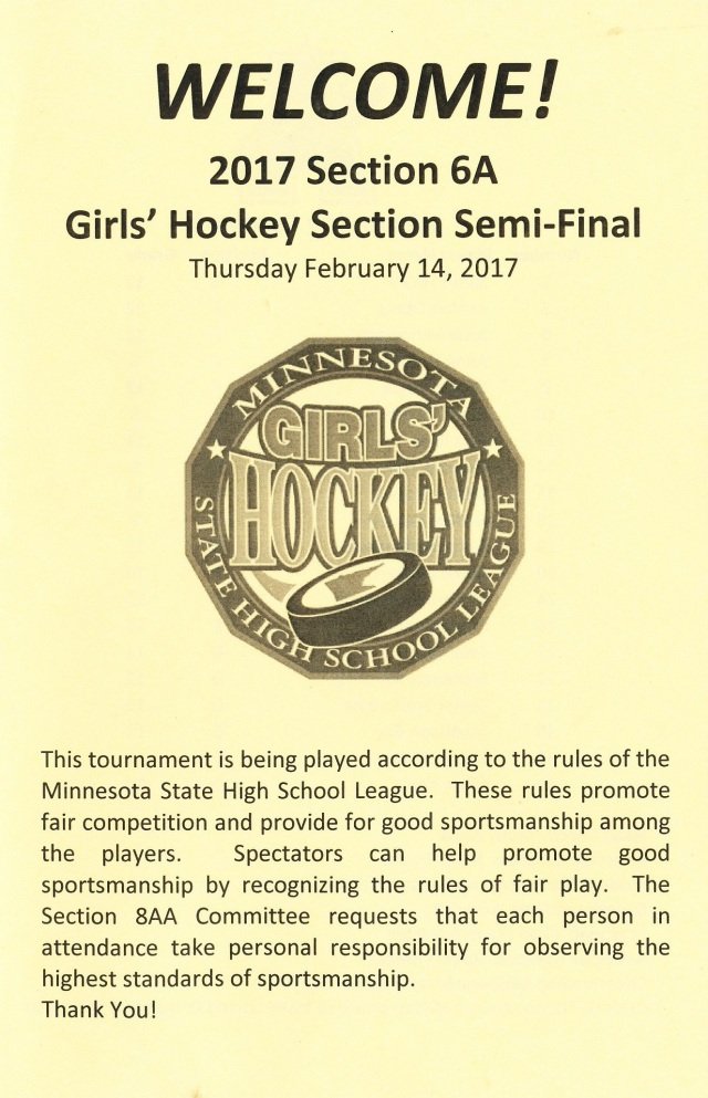 girls-hockey-sections-17-copy