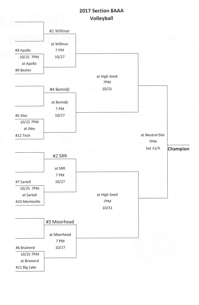 volleyball sections2 - Copy