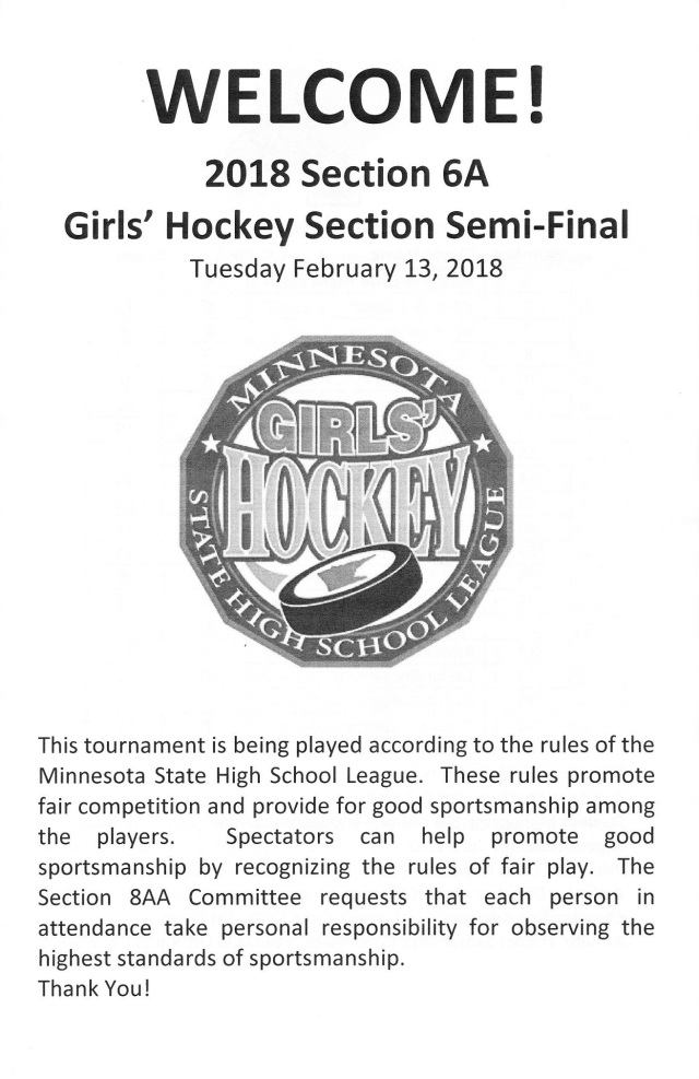 girls hockey sections - Copy