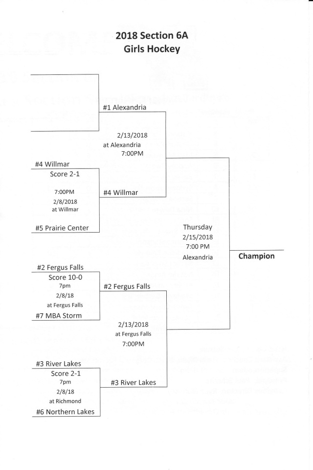 girls hockey sections2 - Copy